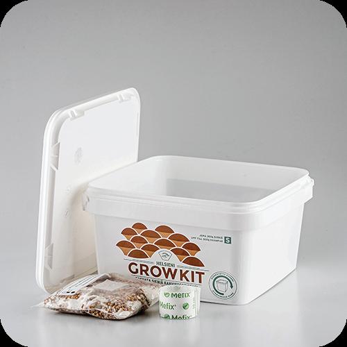 Helsieni Growkit S | Helsieni. Helsieni Growkit on tee-se-itse osterivinokas sientenkasvatusalusta.