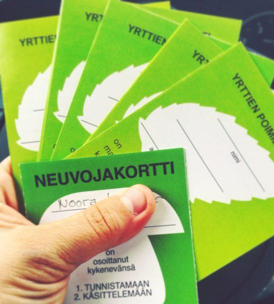 Villiyrttien ja -vihannesten poimijakorttikoulutusta Uudellamaalla | Uusimaa | Hellikki