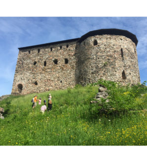 Wild Edible Plants by Raseborg Castle | Pratense