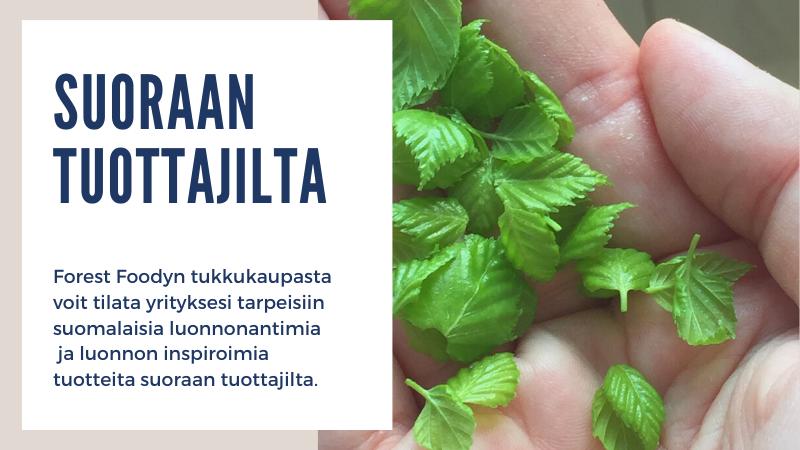Forest Foodyn tukkukauppa - Suomalaisia luonnonantimia ja luonnon inspiroimia tuotteita suoraan tuottajilta