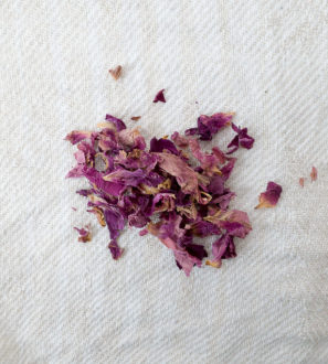 Ruusen terälehtiä_Forest Foody