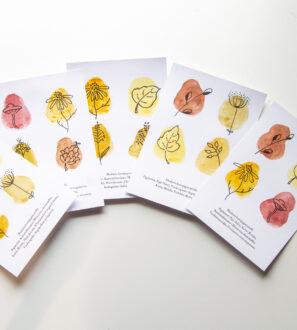 Aidoilla kasvipigmenteillä maalatut postikortit | Outar